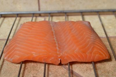 Salmon sitting on a oven rack on table